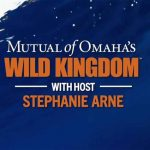 Mutual of Omaha's Wild Kingdom Kelp Forest Series